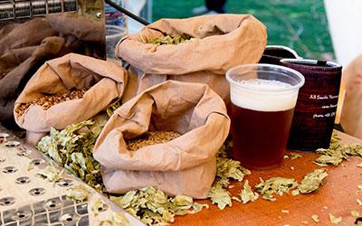 beerfest-hops